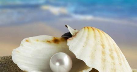 Изящность морского жемчуга