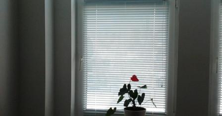 Оформление детской комнаты: пластиковые окна