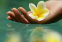 Красота и здоровье: где найти ответы на извечные вопросы
