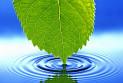 Очищенная вода – здоровье и долголетие