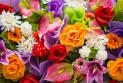 Правила выбора хороших цветов