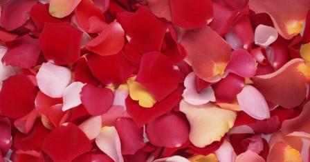 Возможные варианты использования лепестков роз