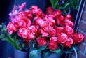 Лучшая доставка цветов в Ростове-на-Дону для ваших любимых