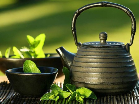 Зеленый чай – основа интенсивного очищения организма